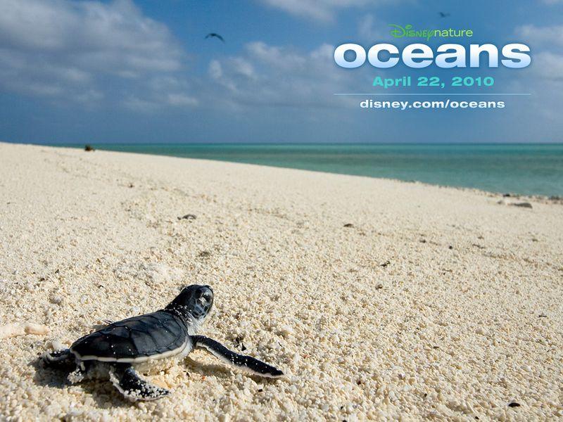 Oceans disney